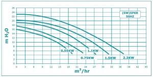 Poolpumpe Duraglas II P-STRHD-101 (5P6RE-1), 230 V